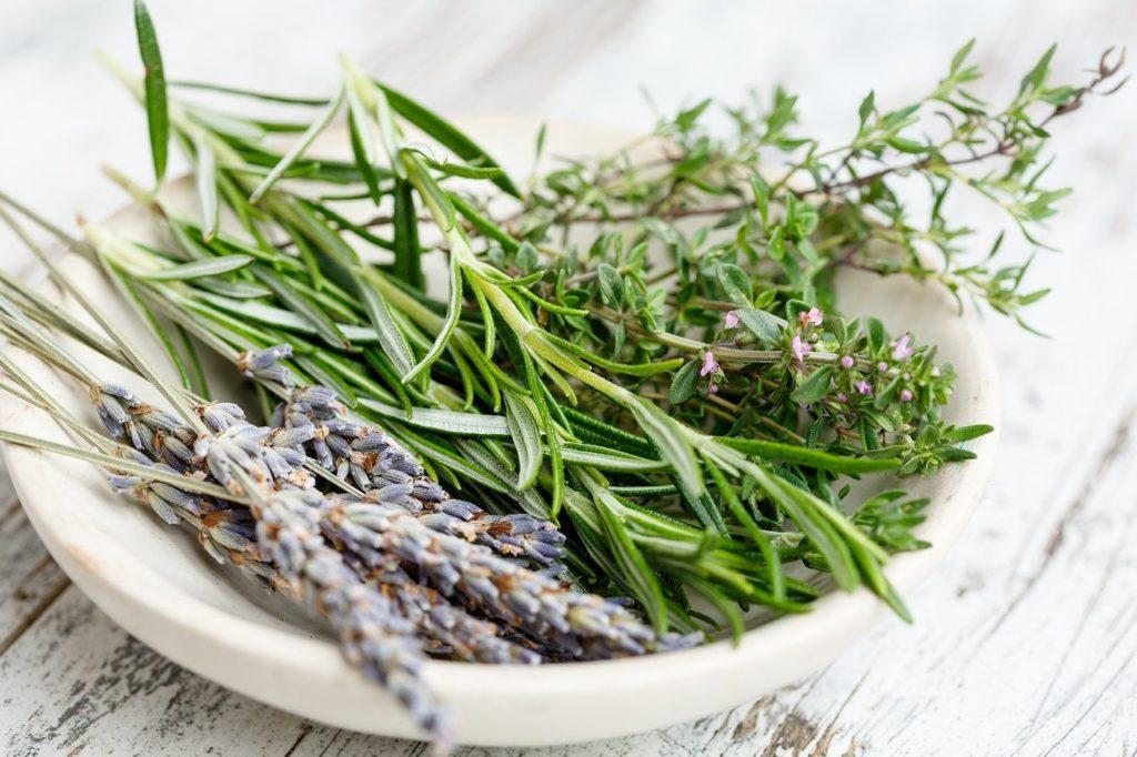 hierbas aromaticas-piel